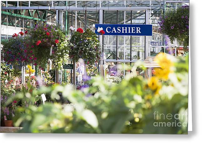 Yardwork Greeting Cards - Garden Store Greeting Card by Andersen Ross