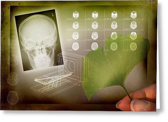 Vertigo Greeting Cards - Ginkgo In Medicine Greeting Card by Miriam Maslo