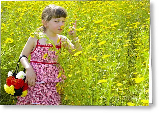 Children Only Greeting Cards - Girl Picking Flowers Greeting Card by Amir Paz