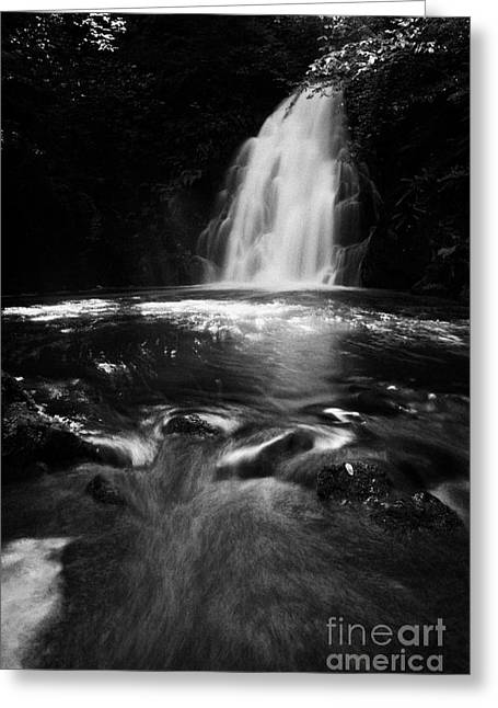 River Flooding Greeting Cards - Gleno or Glenoe Waterfall county antrim northern ireland uk Greeting Card by Joe Fox