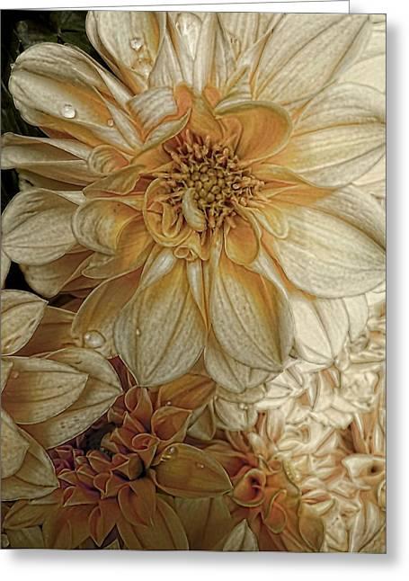 Julie Williams Greeting Cards - Golden Summer  Greeting Card by Julie Williams