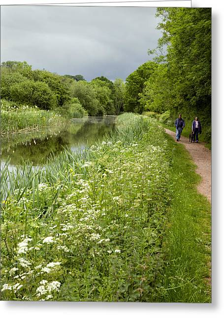 Walk Paths Greeting Cards - Grand Western Canal, Devon, Uk Greeting Card by Dr Keith Wheeler