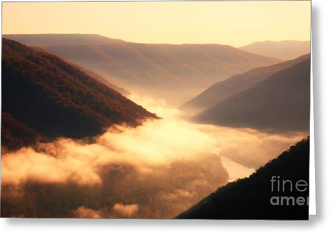 Grandview Greeting Cards - Grandview New River Gorge National River Greeting Card by Thomas R Fletcher