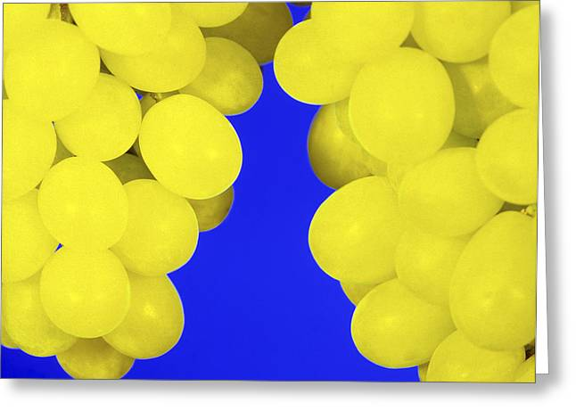 Bunch Of Grapes Greeting Cards - Grapes Greeting Card by Johnny Greig
