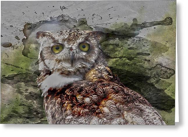 Edmonton Greeting Cards - Great Horned  Greeting Card by Jerry Cordeiro