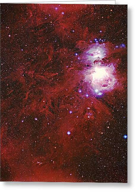 Starry Reflections Greeting Cards - Great Orion Nebula Greeting Card by Mpia-hd, Birkle, Slawik