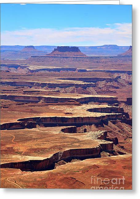 The Plateaus Greeting Cards - Green River Overlook in Canyonlands National Park Greeting Card by Louise Heusinkveld