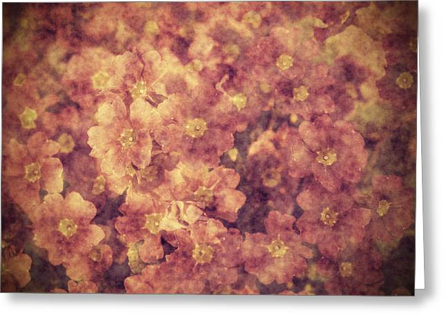 Abstract Style Greeting Cards - Grunge flowers Greeting Card by Jaroslaw Grudzinski