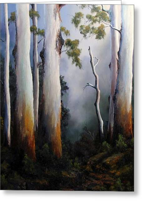 Gumtree Greeting Cards - Gumtrees After The Rain Greeting Card by John Cocoris