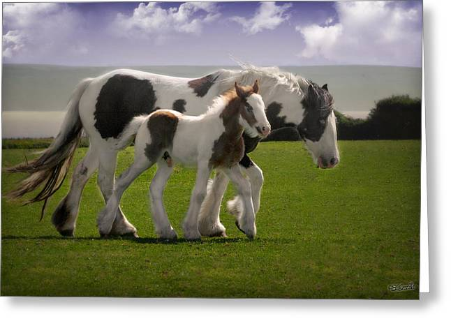 Vale Greeting Cards - Gypsy Mare and Foal Greeting Card by Elizabeth Sescilla