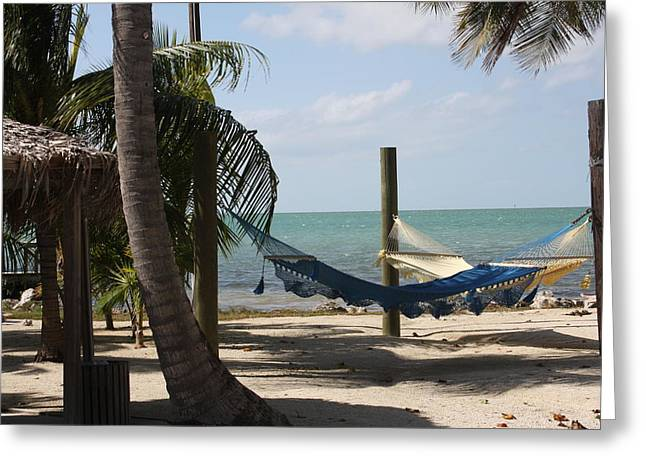 Bonnes Eyes Fine Art Photography Greeting Cards - Hammocks in the Trees Greeting Card by Bonnes Eyes Fine Art Photography