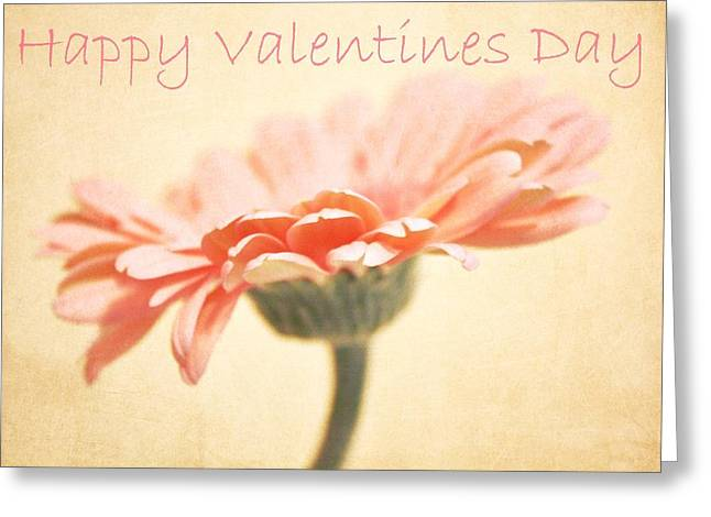 Gerber Greeting Cards - Happy Valentines Day Greeting Card by Cathie Tyler