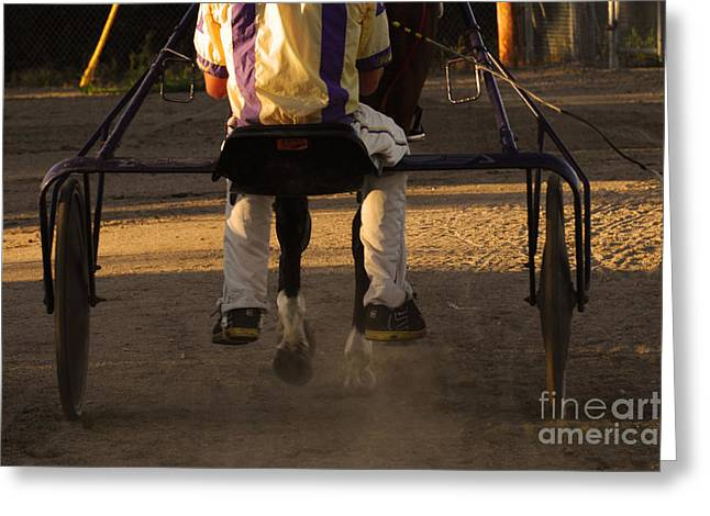 Race Horse Greeting Cards - Harness Racing 10 Greeting Card by Bob Christopher