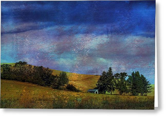 Ranch Digital Art Greeting Cards - Harvested Greeting Card by David Patterson
