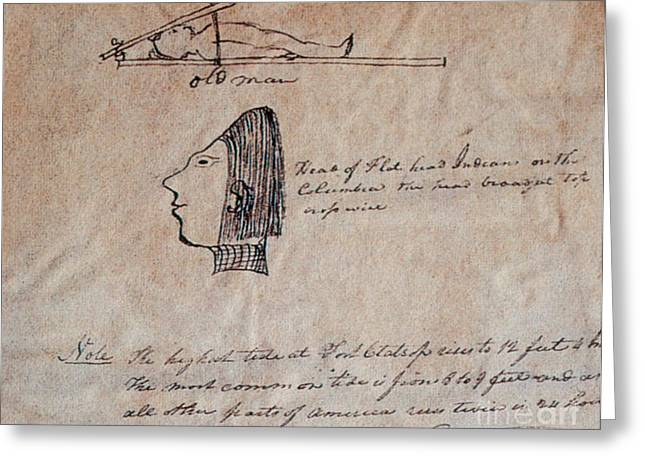 Flattened Greeting Cards - Head-flattening By Chinook Indians Greeting Card by Photo Researchers