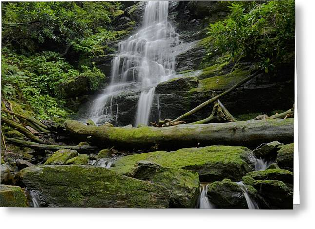 Stokes State Forest Greeting Cards - Hidden Falls  Greeting Card by Stephen  Vecchiotti