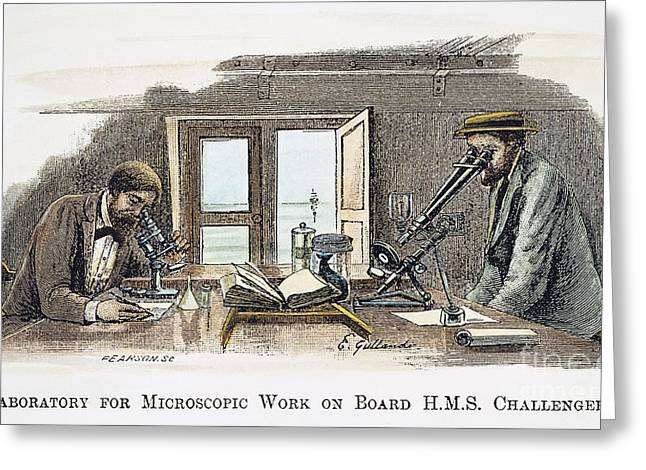 1870s Greeting Cards - Hms Challenger Scientists Greeting Card by Granger