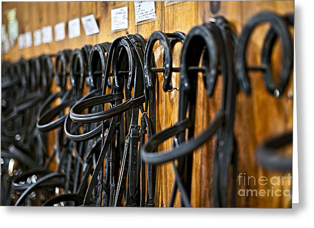 Horseback Photographs Greeting Cards - Horse bridles hanging in stable Greeting Card by Elena Elisseeva