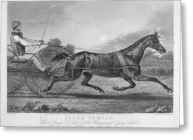 Buggy Whip Greeting Cards - Horse Racing, 1857 Greeting Card by Granger