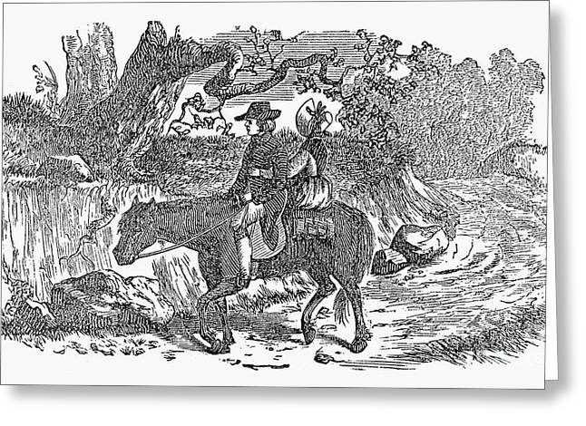 Sidesaddle Greeting Cards - Horseback Riding Greeting Card by Granger