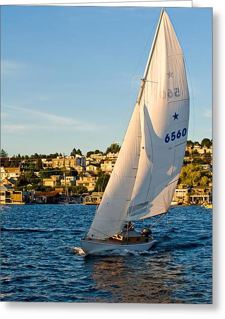 Wind In The Sails Greeting Cards - In the Wind Greeting Card by Tom Dowd