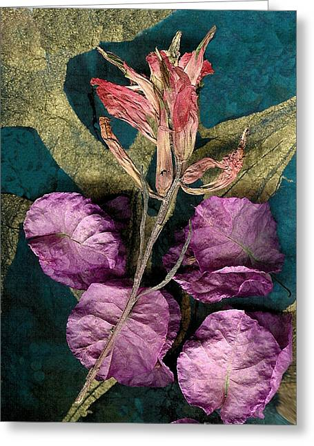 Visionary Artist Greeting Cards - Indian Paintbrush Fadeing Greeting Card by George  Page