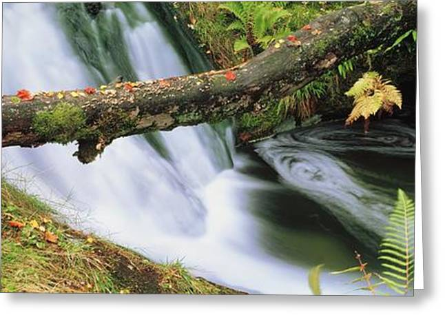 Ireland Waterfall Greeting Card by The Irish Image Collection