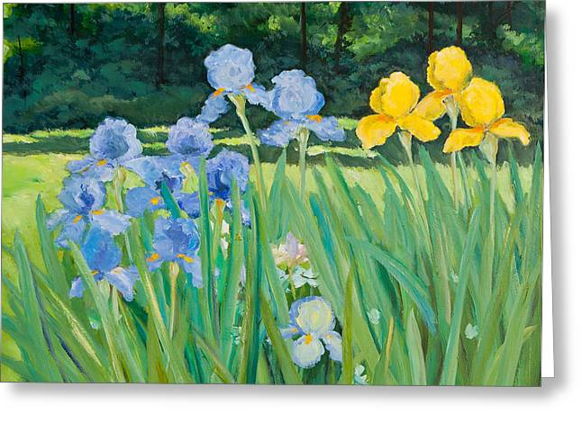 Irises In The Garden Greeting Card by Betty McGlamery