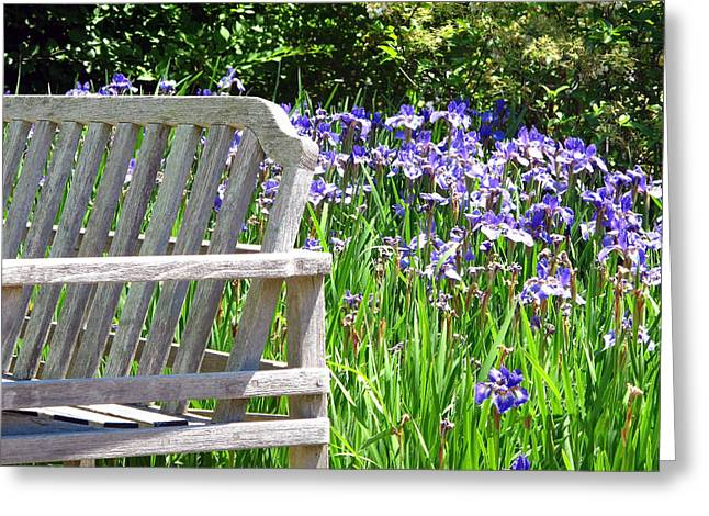 Best Sellers -  - Cheekwood Greeting Cards - Irises  Greeting Card by Joy Neasley