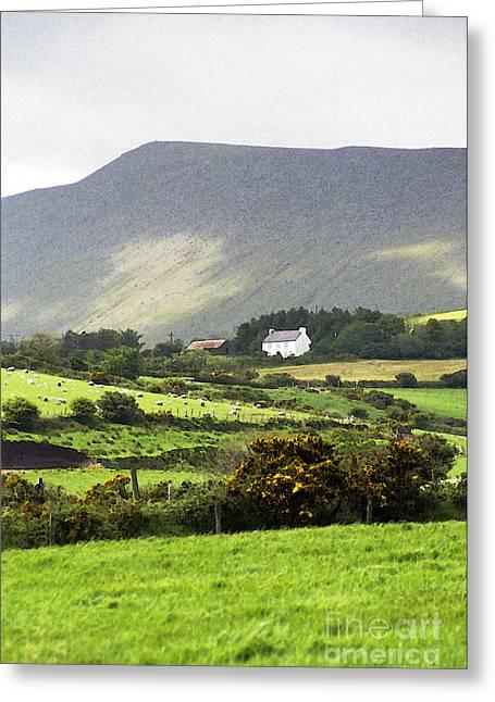 Irish Farm - Dingle Peninsula  Greeting Card by Gordon Wood