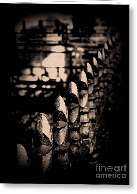 Avantgarde Greeting Cards - Iron Fence Greeting Card by Susanne Van Hulst