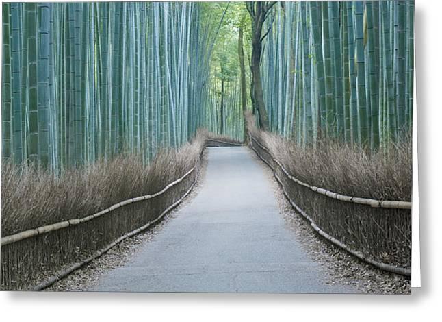 Japan Kyoto Arashiyama Sagano Bamboo Greeting Card by Rob Tilley