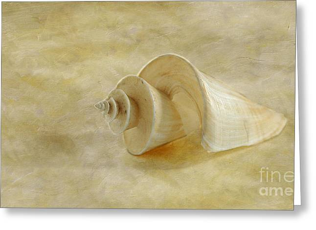 Cindi Ressler Greeting Cards - Japanese Wonder Shell Greeting Card by Cindi Ressler