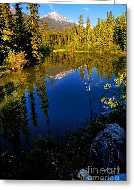 Jasper - Miette River Greeting Card by Terry Elniski