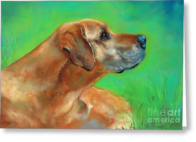 Canines Pastels Greeting Cards - Jasper Greeting Card by Frances Marino
