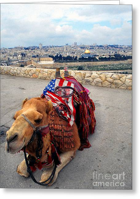From The Dome Greeting Cards - Jerusalem from Mount Olive Greeting Card by Thomas R Fletcher