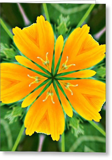 Kaleidoscope Effect Greeting Cards - Kaleidoscope of a Poppy Greeting Card by Cathie Tyler
