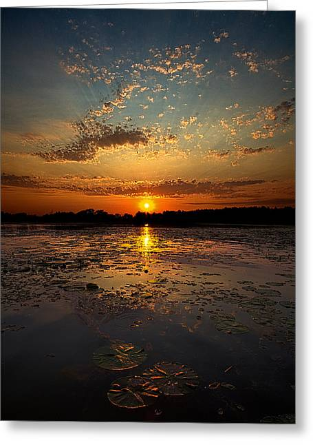Geographic Greeting Cards - Lake George Greeting Card by Phil Koch