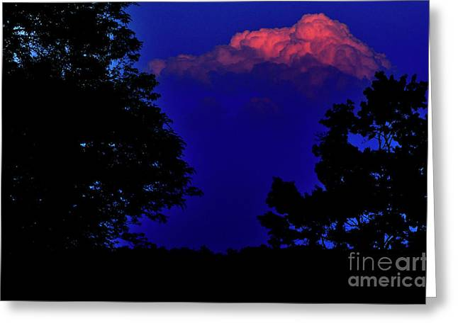 Evening Lights Greeting Cards - Last of the Light Greeting Card by Thomas R Fletcher