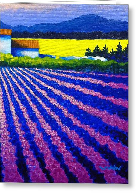 Colorist Greeting Cards - Lavender Field Provence Greeting Card by John  Nolan
