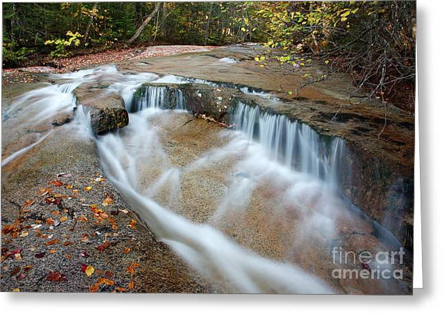Ledge Greeting Cards - Ledge Brook - White Mountains New Hampshire USA Greeting Card by Erin Paul Donovan
