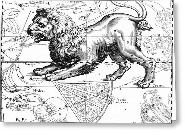 1690 Greeting Cards - Leo, The Hevelius Firmamentum, 1690 Greeting Card by Science Source