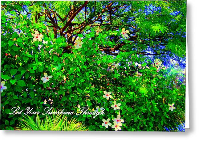 Digital Art Greeting Cards - Let Your Sunshine Through Greeting Card by Sherri  Of Palm Springs
