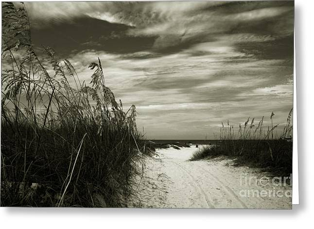 Sea Oats Greeting Cards - Lets go to the beach Greeting Card by Susanne Van Hulst