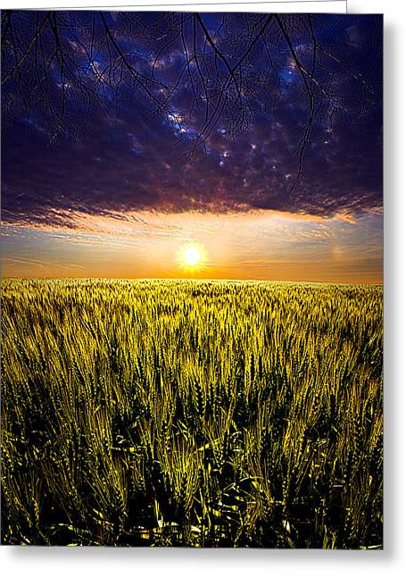 Geographic Greeting Cards - Light Bright Greeting Card by Phil Koch