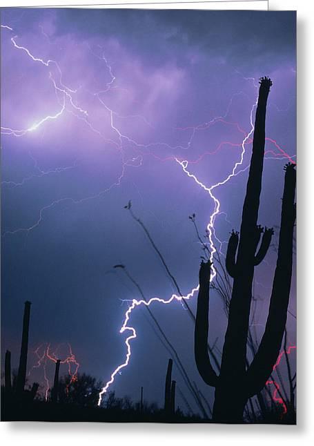 Arizona Lightning Greeting Cards - Lightning Storm Over Tucson, Arizona Greeting Card by Keith Kent