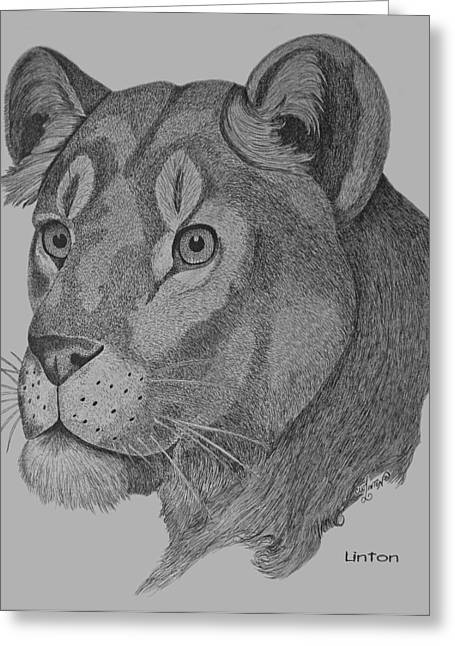 Lioness Drawings Greeting Cards - Lioness Greeting Card by Larry Linton