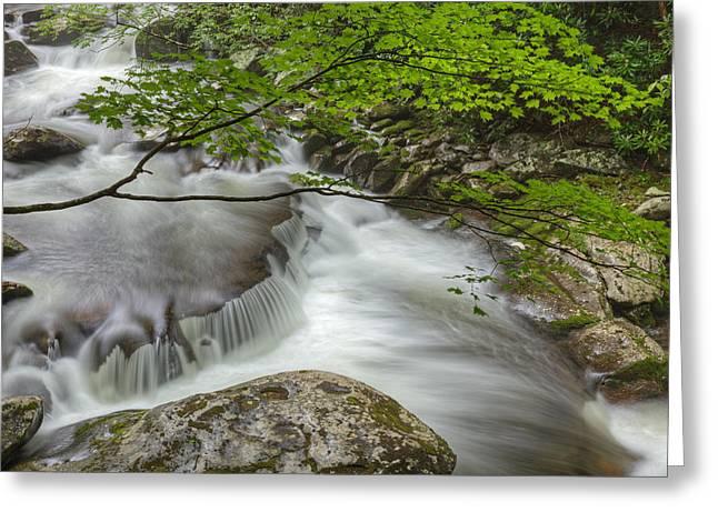 Beautiful Creek Greeting Cards - Little River Cascade Greeting Card by Dean Pennala