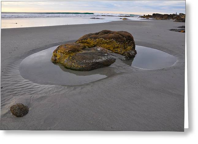 Best Sellers -  - Tidal Photographs Greeting Cards - Longsands Rock Greeting Card by Catherine Easton