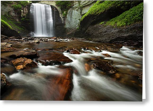 Waterfall Greeting Cards - Looking Glass Falls Greeting Card by Andrew Soundarajan